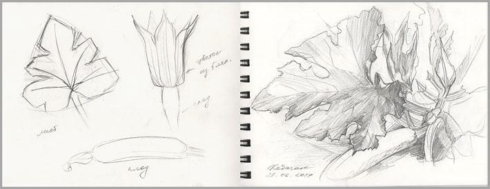 Для практики рисунки для скетчбука в стиле аниме 11