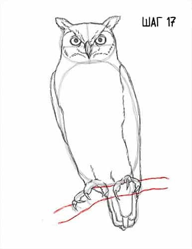 Легкие рисунки совы карандашом, картинки 08