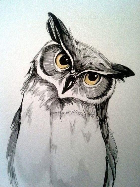 Легкие рисунки совы карандашом, картинки 11