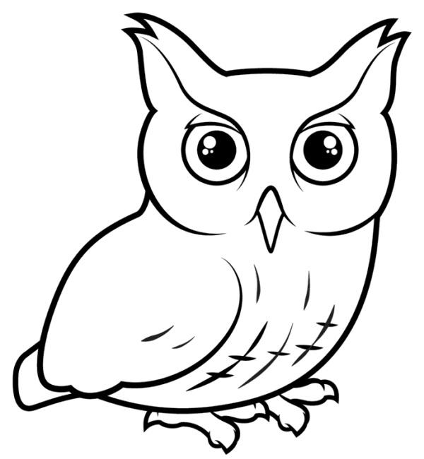 Простой цветной рисунок совы, картинки 03