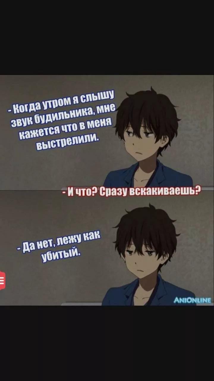 Угарные аниме мемы на русском про школу 24