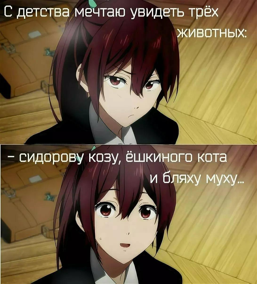 Угарные аниме мемы на русском про школу 6