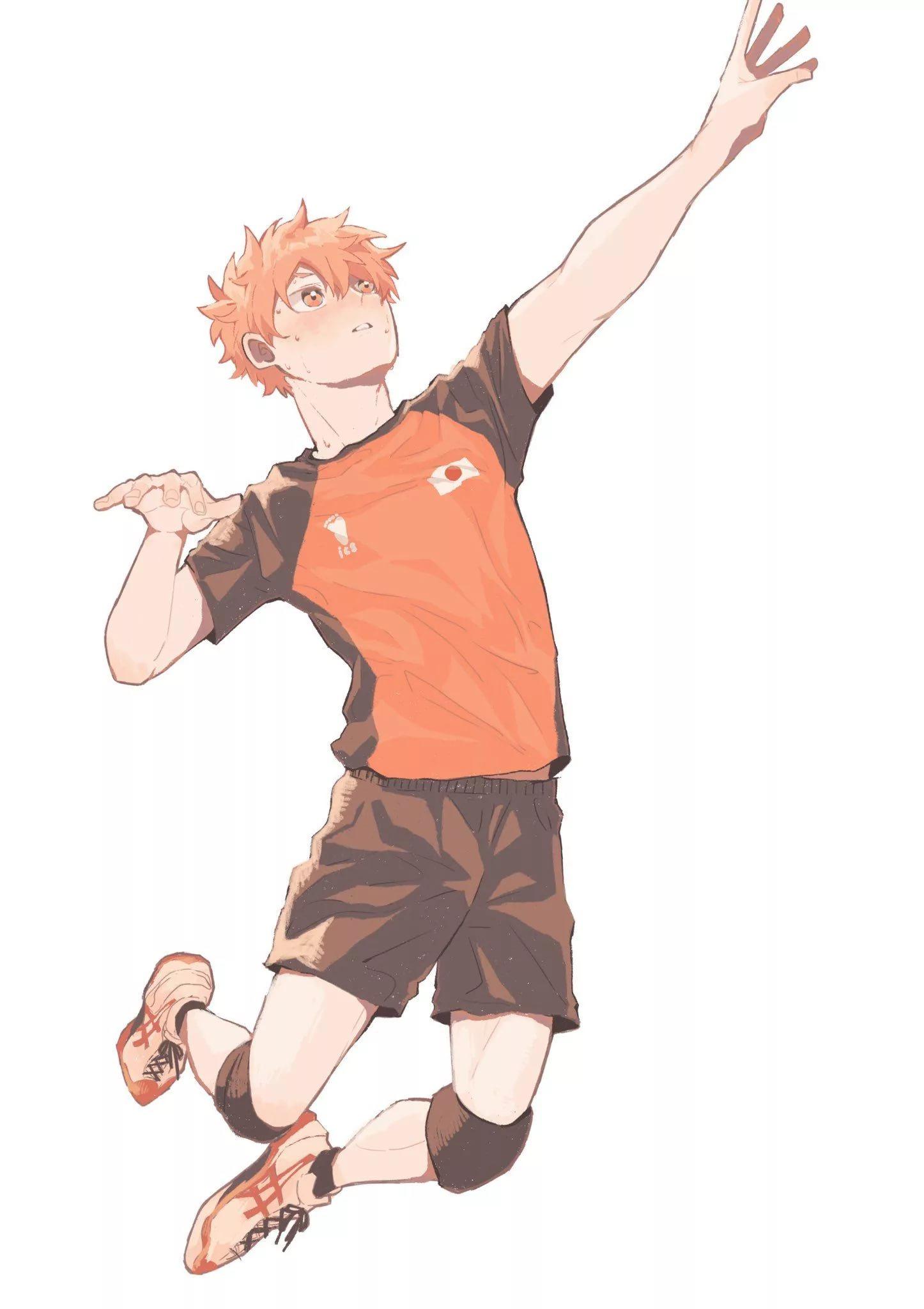 Волейбол аниме обои на телефон хината 17