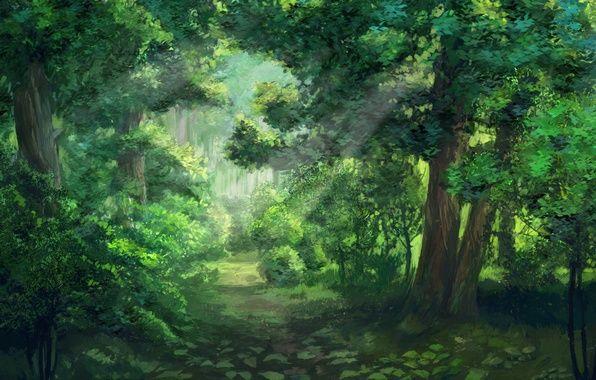 Красивый аниме фон лес 2