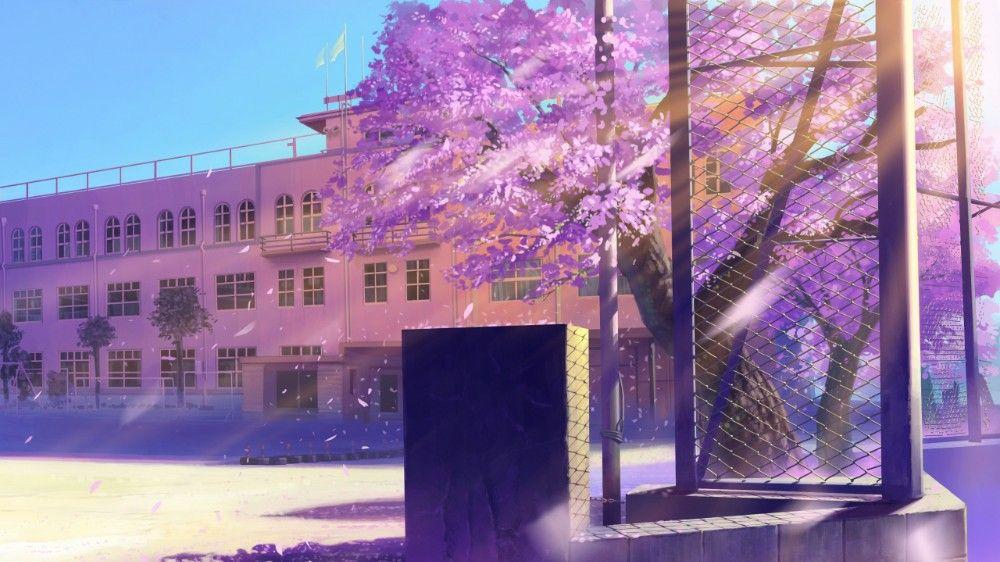 Красивый фон аниме школа 28