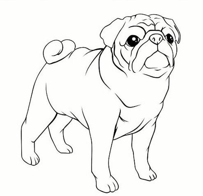 Легкие рисунки каракули для срисовки 4