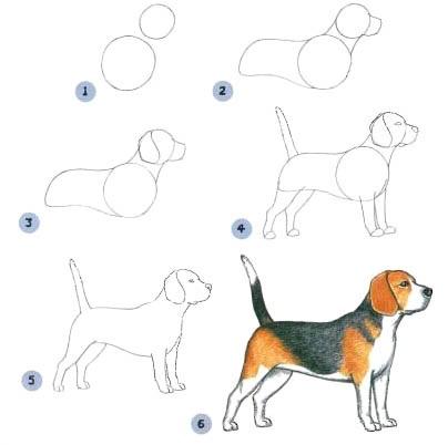 Пошагово рисунки для срисовки   подборочка (12)
