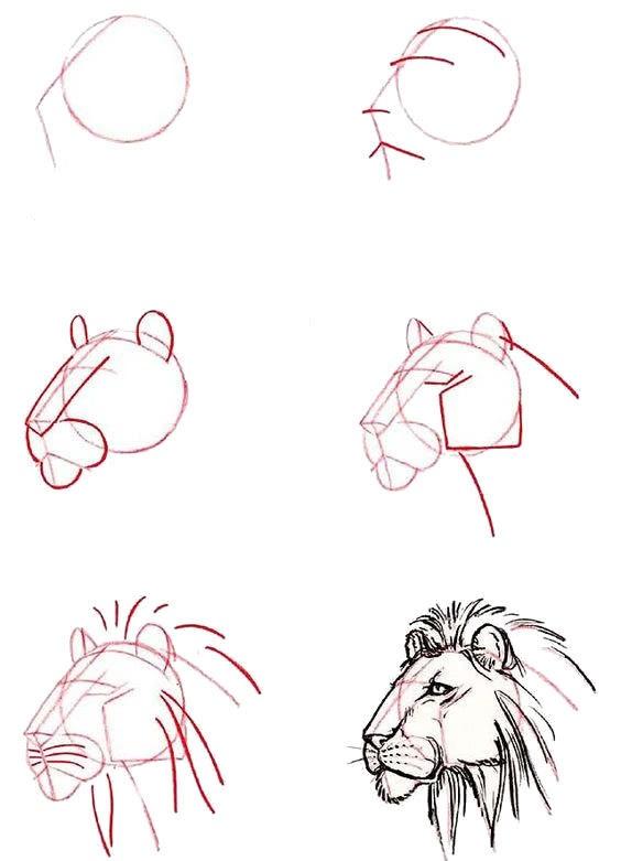 Пошагово рисунки для срисовки   подборочка (25)
