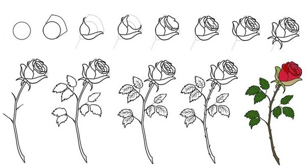 Пошагово рисунки для срисовки   подборочка (28)