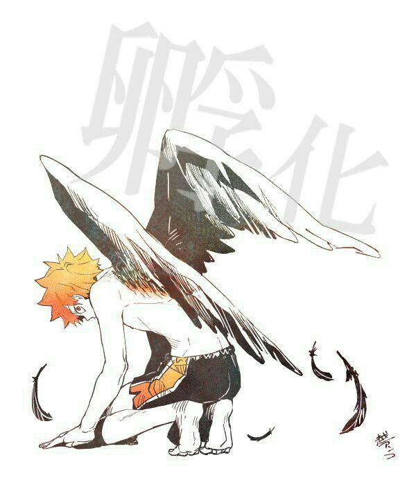 Шоё Хината, арты главного героя из Haikyuu!! (11)